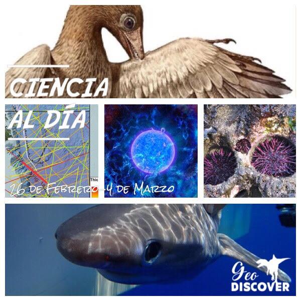 Cabecera de Ciencia al Día